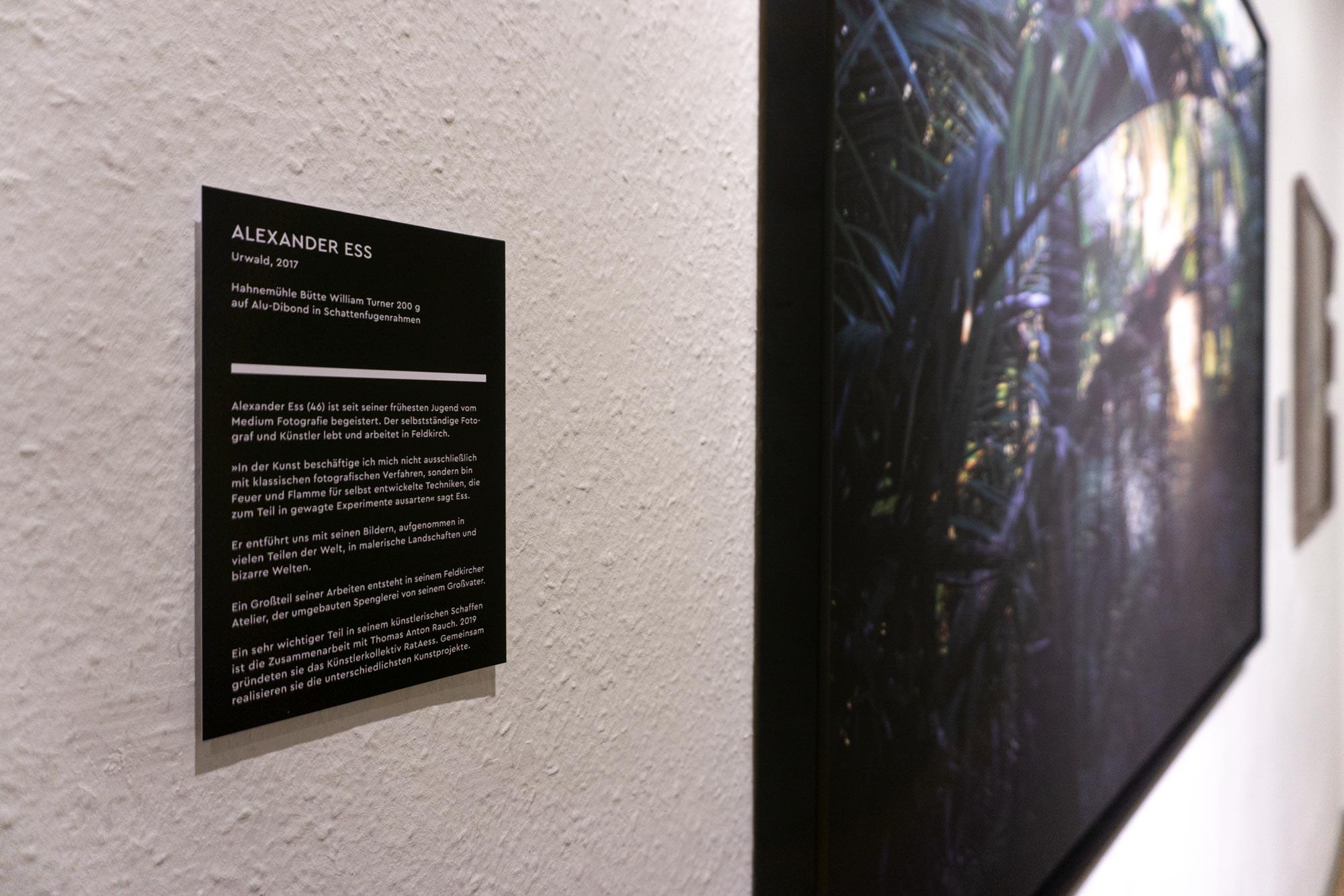 Ausstellungsbeschriftung in der Villa Claudia, Feldkirch – Bernhard Hafele, viergestalten
