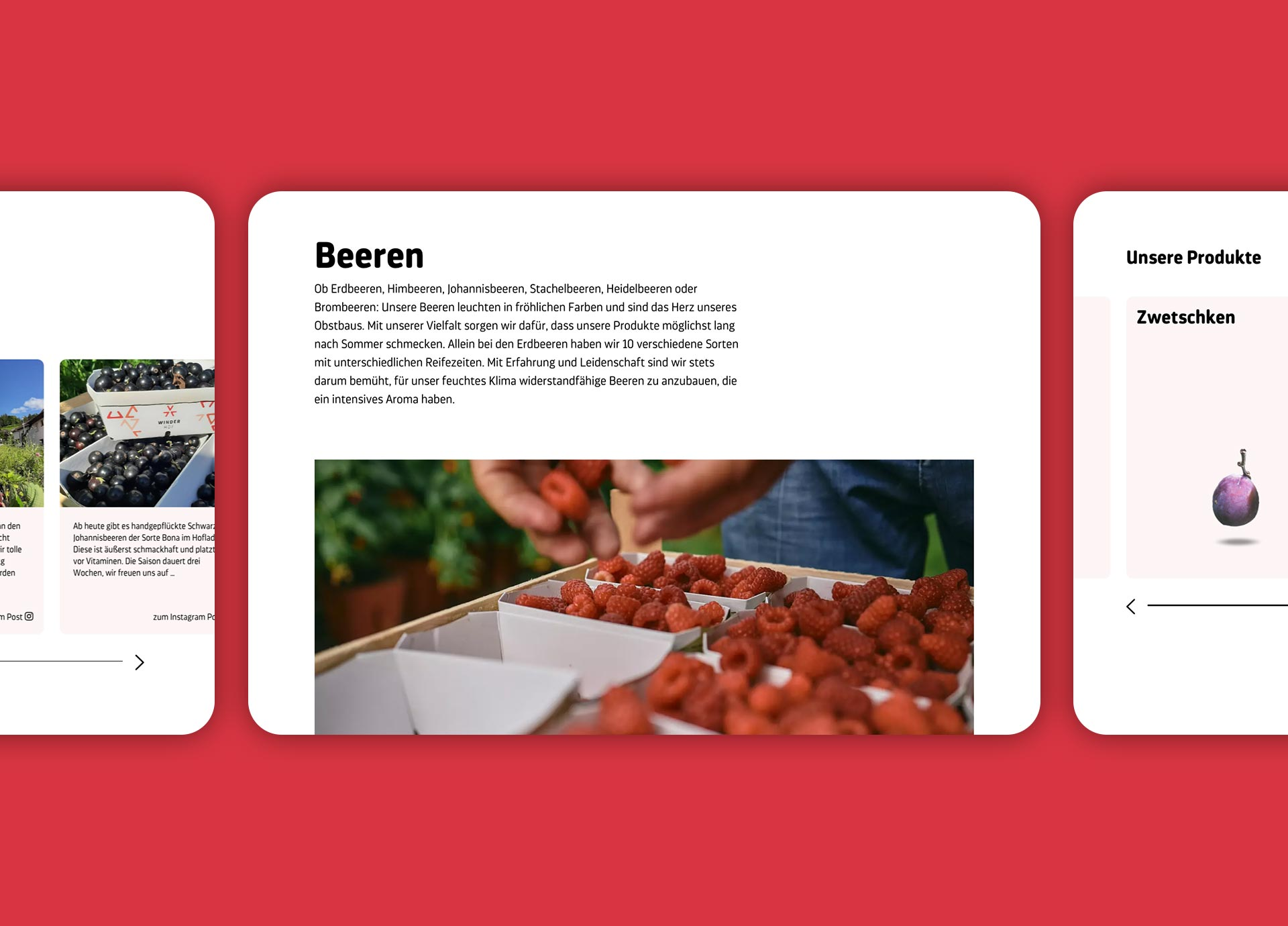 Desktop Ansicht der Winderhof Website